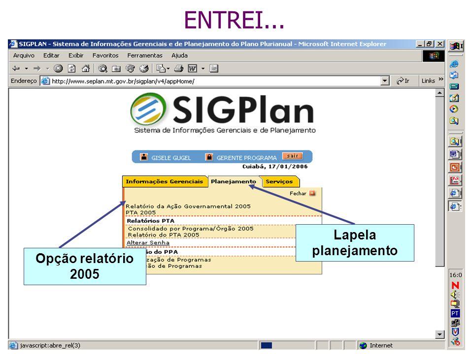 ENTREI... Lapela planejamento Opção relatório 2005
