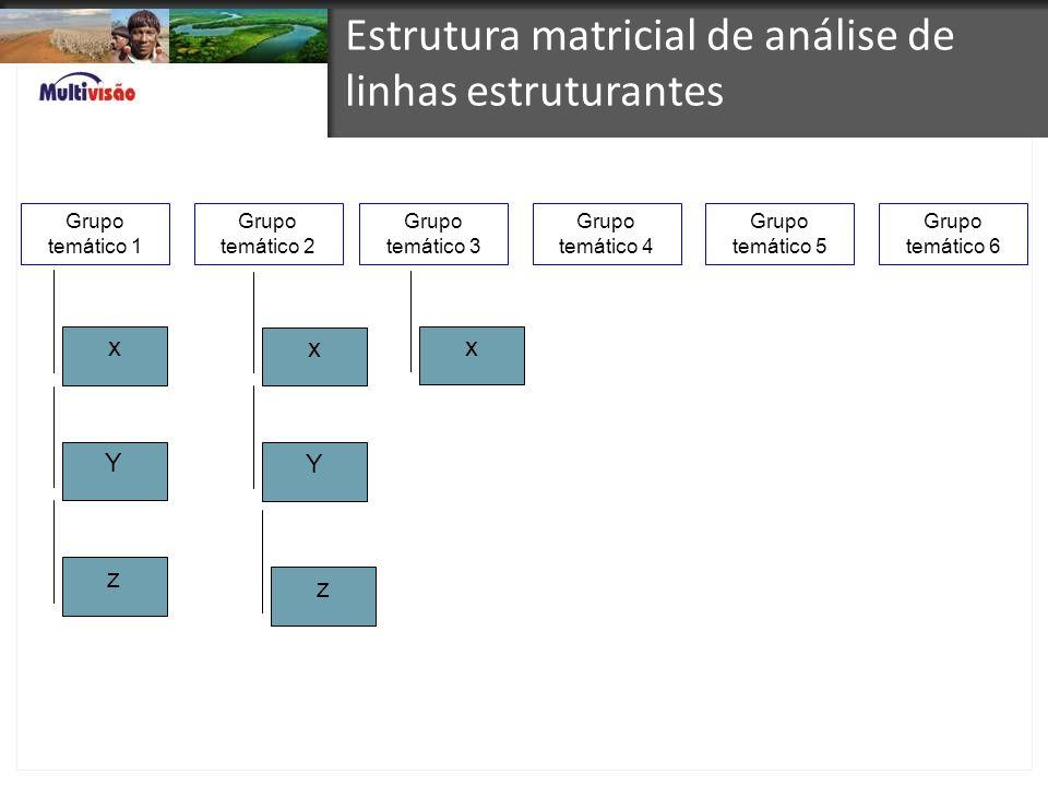 Estrutura matricial de análise de linhas estruturantes Grupo temático 1 Grupo temático 2 Grupo temático 3 Grupo temático 4 Grupo temático 5 Grupo temá