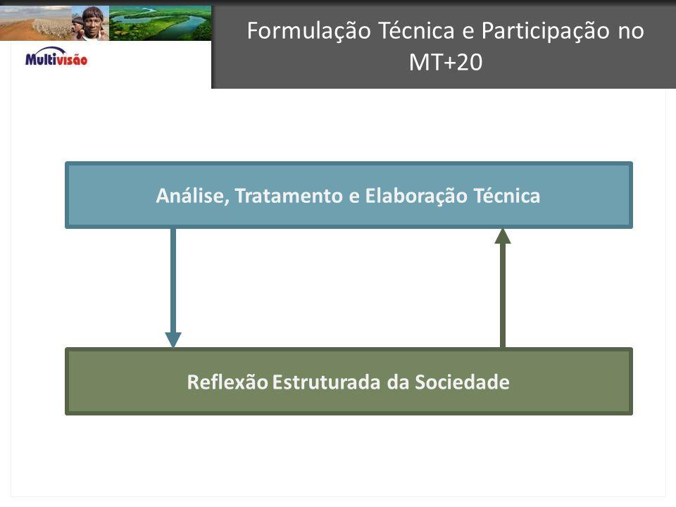 Formulação Técnica e Participação no MT+20 Análise, Tratamento e Elaboração Técnica Reflexão Estruturada da Sociedade