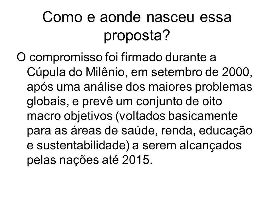 Como e aonde nasceu essa proposta? O compromisso foi firmado durante a Cúpula do Milênio, em setembro de 2000, após uma análise dos maiores problemas