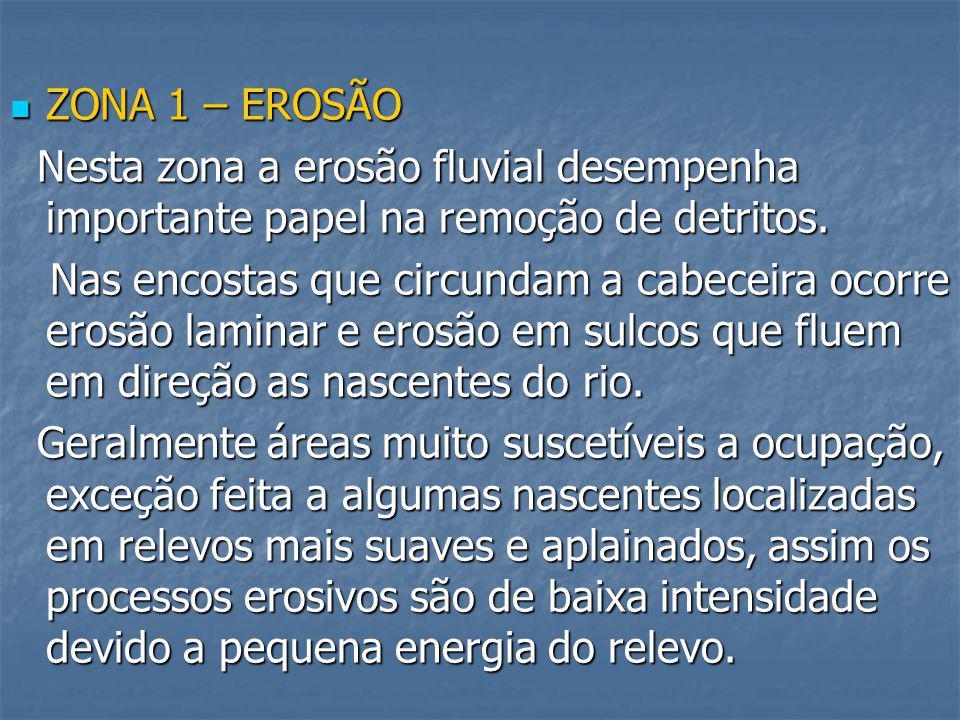 ZONA 2 – EROSÃO E DEPOSIÇÃO ZONA 2 – EROSÃO E DEPOSIÇÃO Esta zona é caracterizada pela trnsferência de sedimentos.