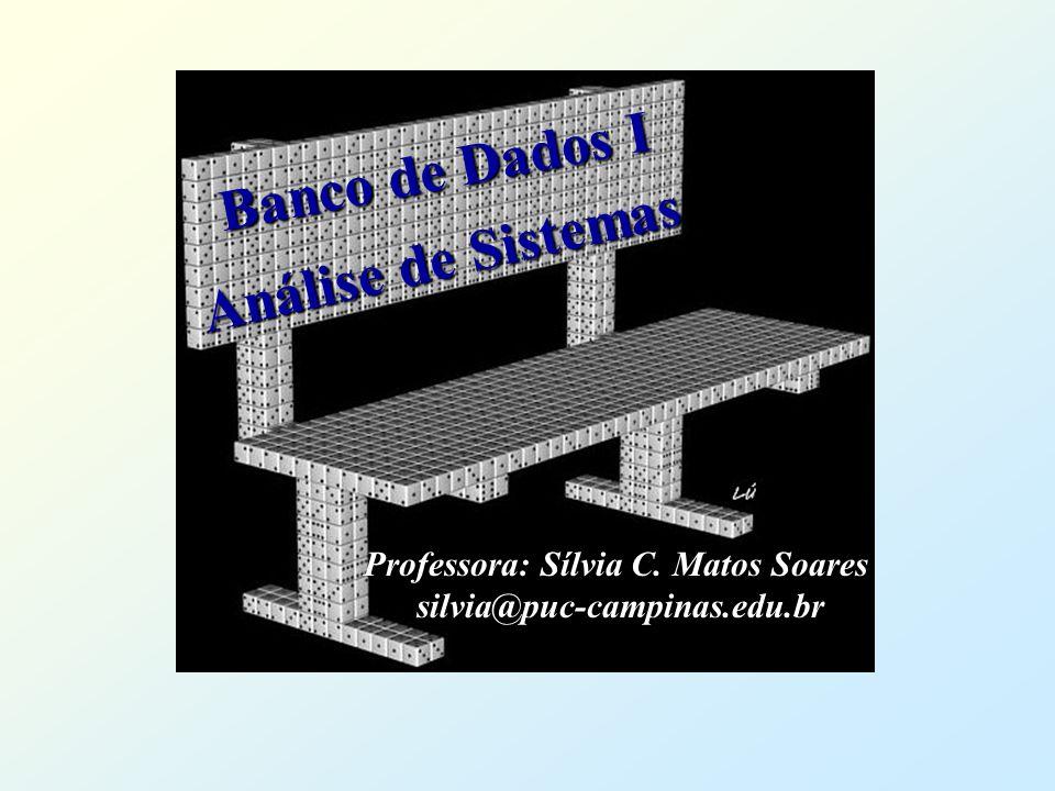 Banco de Dados I Banco de Dados I Professora: Sílvia C. Matos Soares silvia@puc-campinas.edu.br Análise de Sistemas