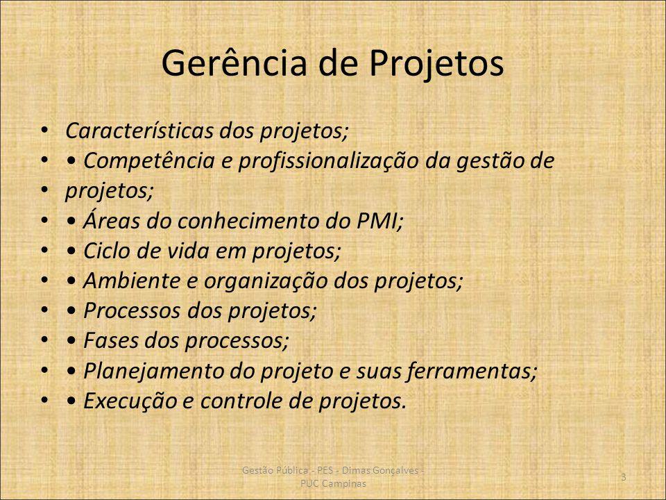 Gerência de Projetos Características dos projetos; Competência e profissionalização da gestão de projetos; Áreas do conhecimento do PMI; Ciclo de vida