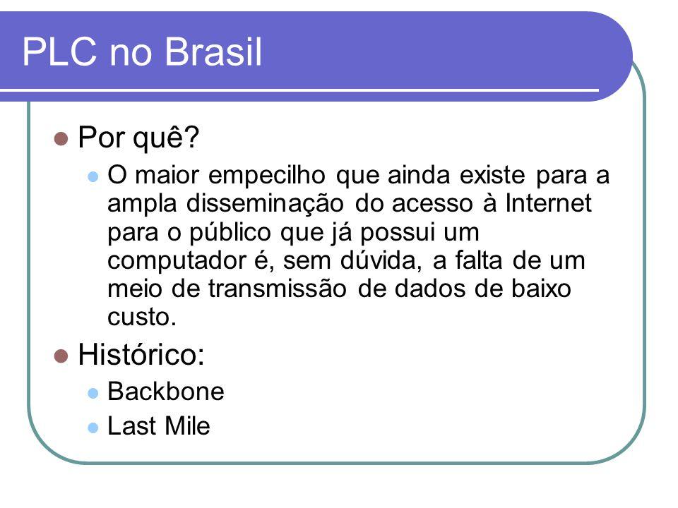 PLC no Brasil Por quê? O maior empecilho que ainda existe para a ampla disseminação do acesso à Internet para o público que já possui um computador é,