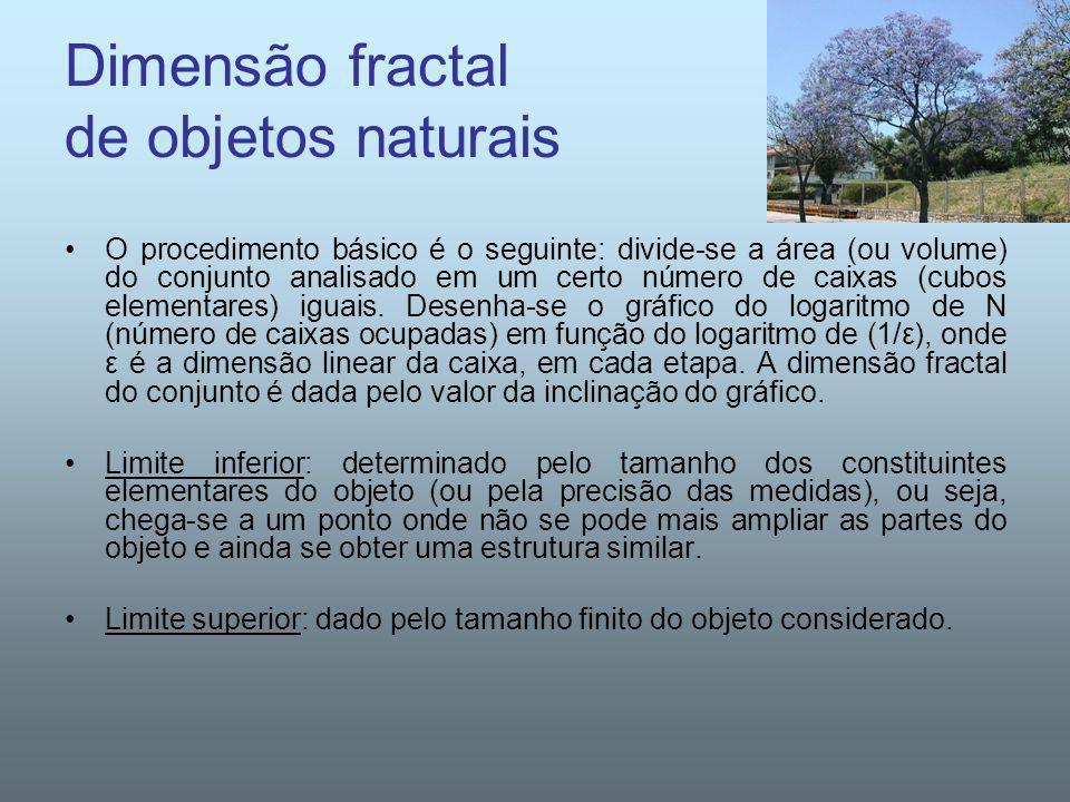 Dimensão fractal de objetos naturais O procedimento básico é o seguinte: divide-se a área (ou volume) do conjunto analisado em um certo número de caix