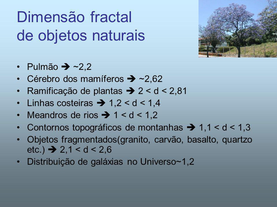 Dimensão fractal de objetos naturais Pulmão ~2,2 Cérebro dos mamíferos ~2,62 Ramificação de plantas 2 < d < 2,81 Linhas costeiras 1,2 < d < 1,4 Meandr