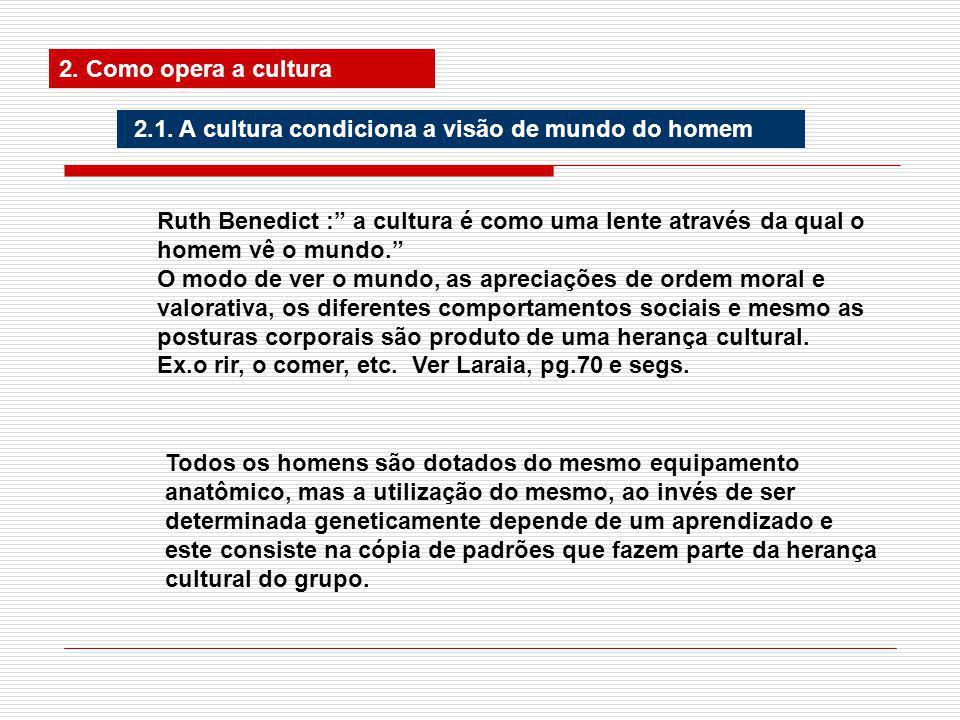 2.Como opera a cultura 2.1.