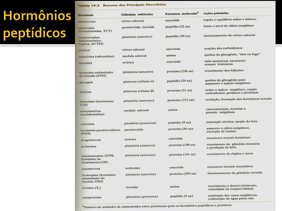 Polímeros com até 50 aminoácidos são chamados peptídeos.
