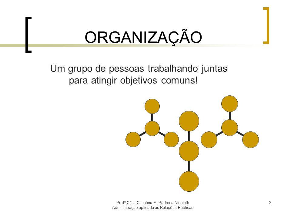 Profª Célia Christina A. Padreca Nicoletti Administração aplicada as Relações Públicas 2 ORGANIZAÇÃO Um grupo de pessoas trabalhando juntas para ating