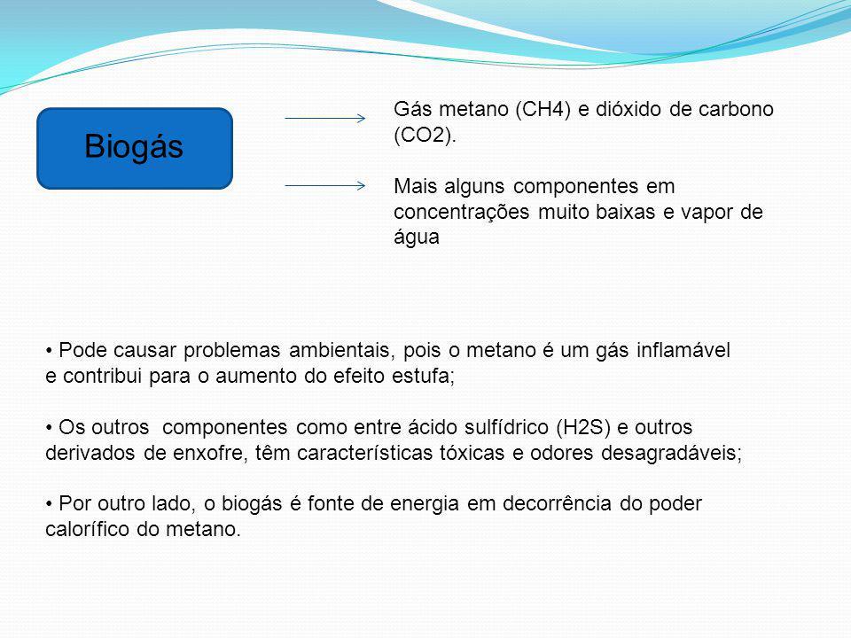 Biogás Gás metano (CH4) e dióxido de carbono (CO2). Mais alguns componentes em concentrações muito baixas e vapor de água Pode causar problemas ambien