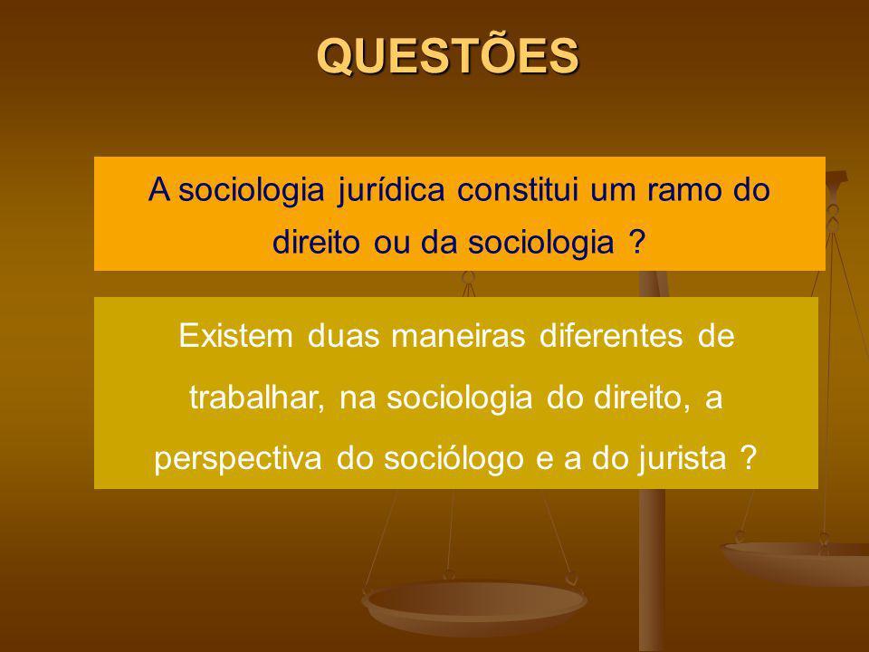 QUESTÕES A sociologia jurídica constitui um ramo do direito ou da sociologia ? Existem duas maneiras diferentes de trabalhar, na sociologia do direito