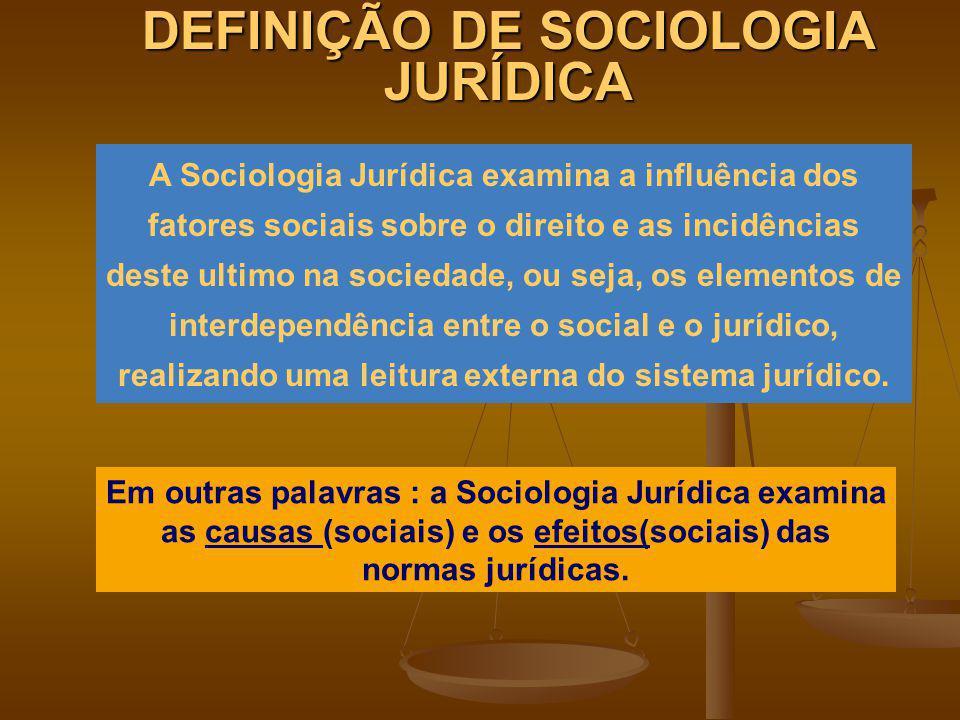 DEFINIÇÃO DE SOCIOLOGIA JURÍDICA A Sociologia Jurídica examina a influência dos fatores sociais sobre o direito e as incidências deste ultimo na socie