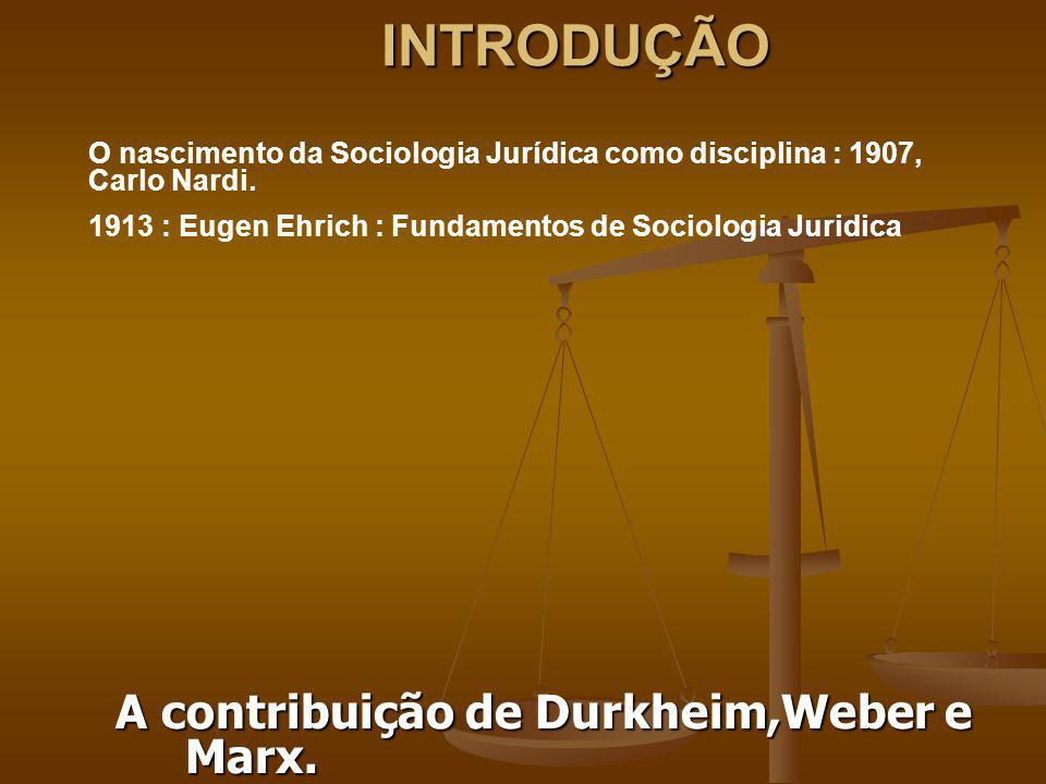 INTRODUÇÃO O nascimento da Sociologia Jurídica como disciplina : 1907, Carlo Nardi. 1913 : Eugen Ehrich : Fundamentos de Sociologia Juridica A contrib