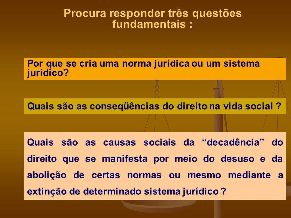 Procura responder três questões fundamentais : Por que se cria uma norma jurídica ou um sistema jurídico? Quais são as conseqüências do direito na vid