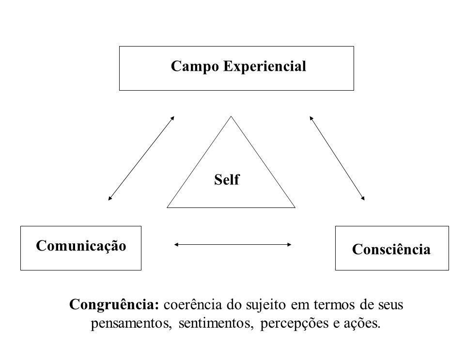 Campo Experiencial Self Comunicação Consciência Congruência: coerência do sujeito em termos de seus pensamentos, sentimentos, percepções e ações.