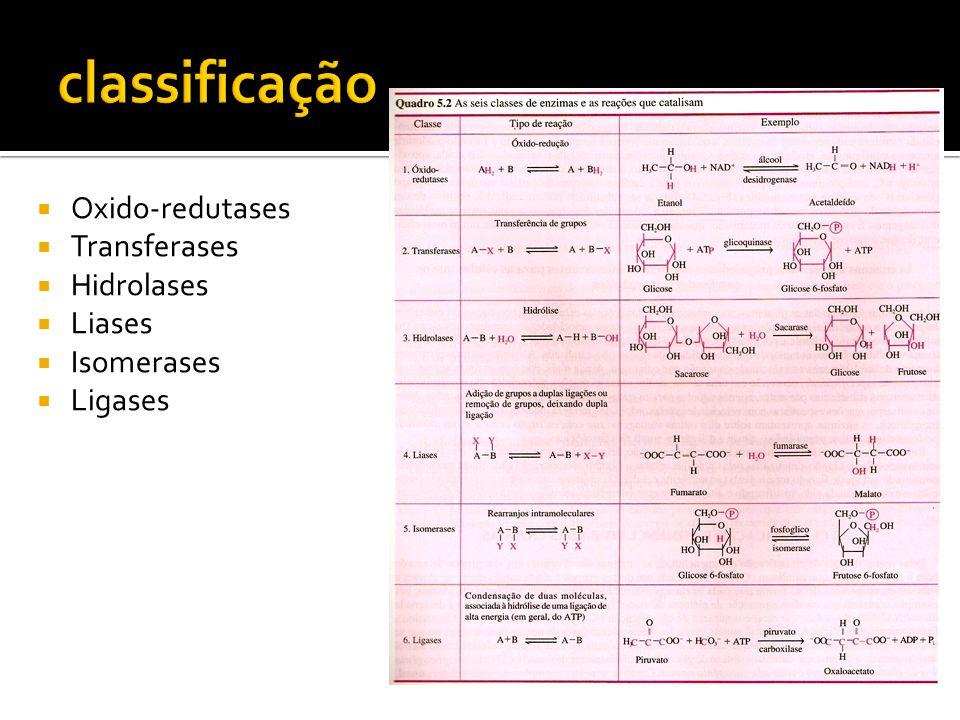 Catalizando (aumentando a velocidade de uma reação) Mas como ocorre a catálise.