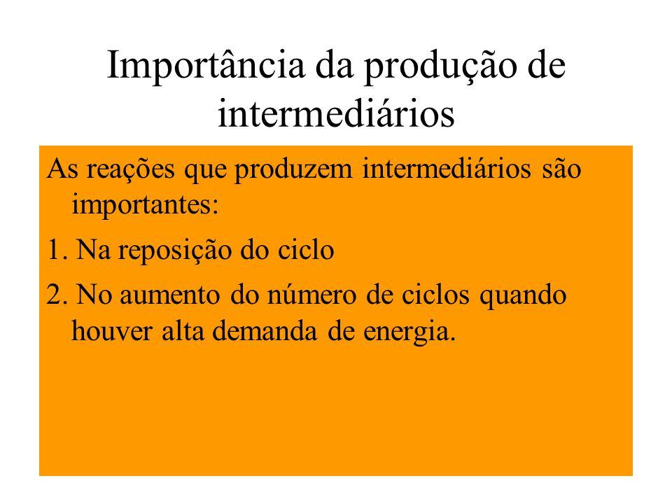 Importância da produção de intermediários As reações que produzem intermediários são importantes: 1. Na reposição do ciclo 2. No aumento do número de