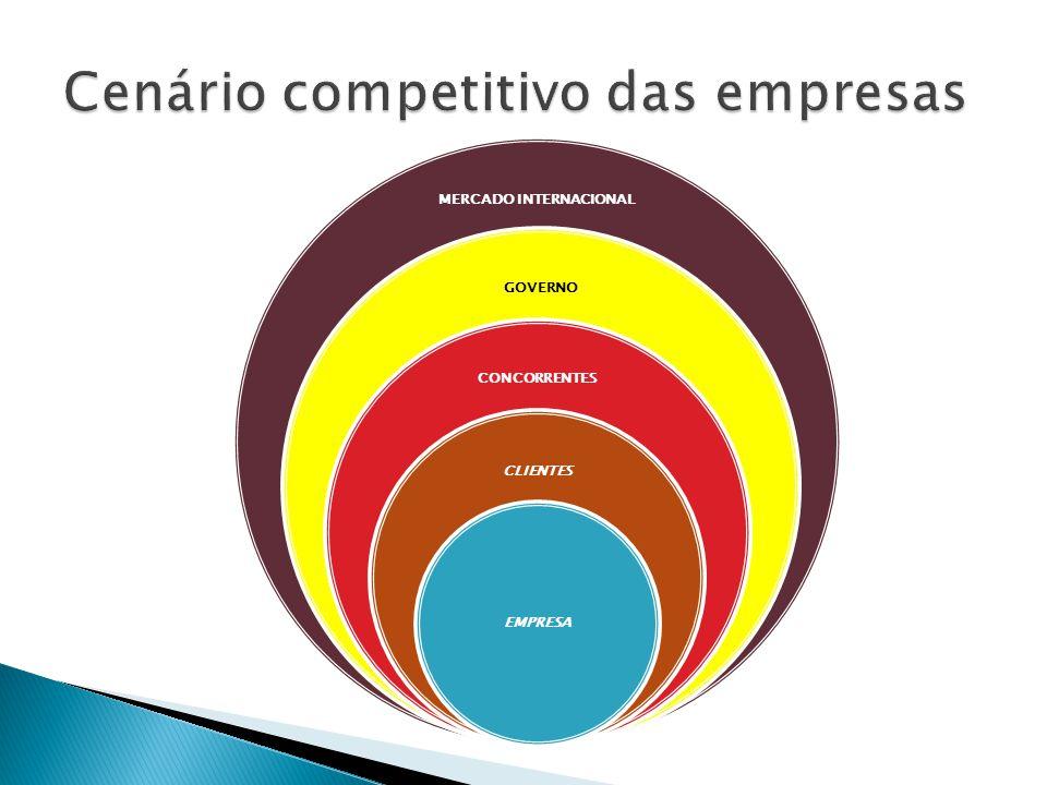 MERCADO INTERNACIONAL GOVERNO CONCORRENTES CLIENTES EMPRESA