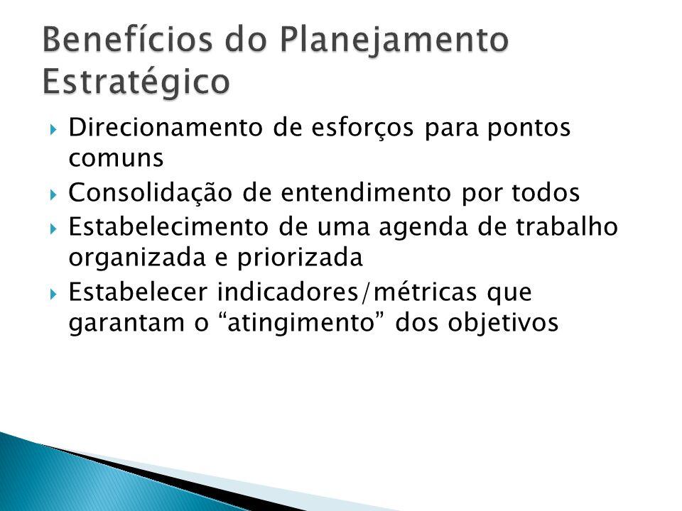 Direcionamento de esforços para pontos comuns Consolidação de entendimento por todos Estabelecimento de uma agenda de trabalho organizada e priorizada