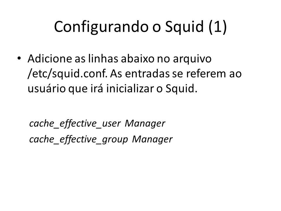 Configurando o Squid (2) Para ser capaz de usar o Squid como um Transparente Proxy, temos que adicionar a seguinte informação no arquivo de configuração em /squid/etc/squid.conf.