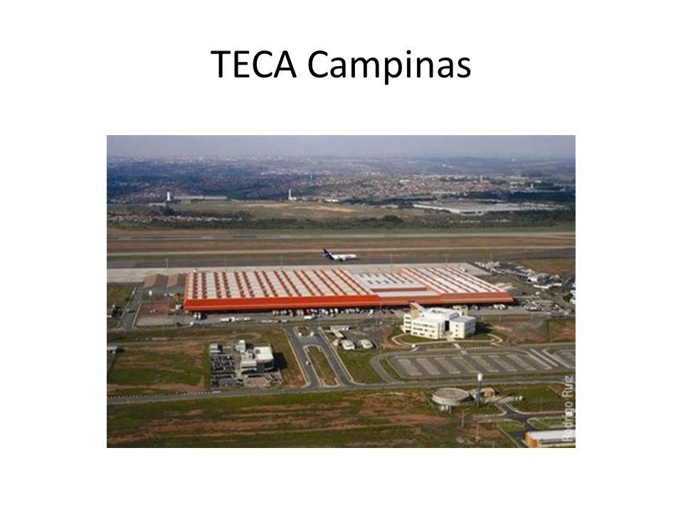 TECA Campinas