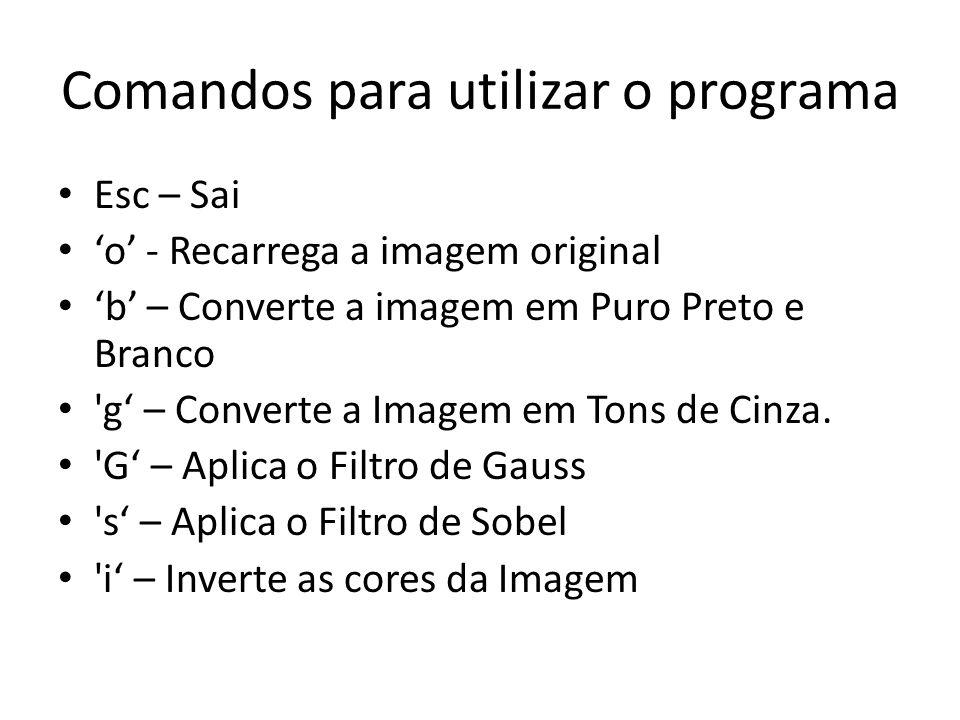 Comandos para utilizar o programa Esc – Sai o - Recarrega a imagem original b – Converte a imagem em Puro Preto e Branco g – Converte a Imagem em Tons de Cinza.