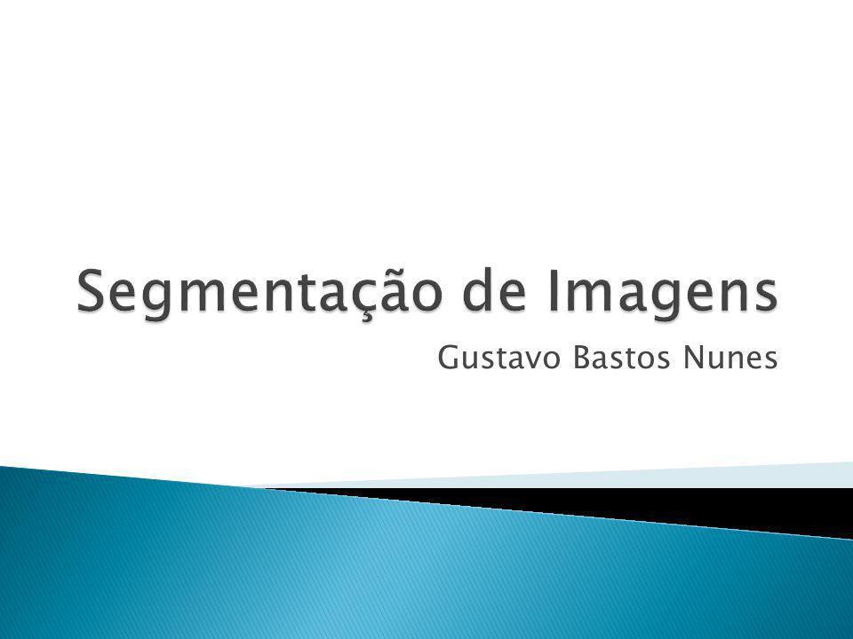 Gustavo Bastos Nunes