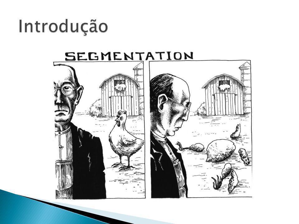 Objetivo de particionar uma imagem digital em multiplos segmentos ( cluster de pixels ) Pode ser usada para reconhecimento de objetos, compressão de imagens, edição de imagens entre outros.