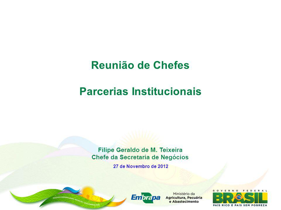Filipe Geraldo de M. Teixeira Chefe da Secretaria de Negócios 27 de Novembro de 2012 Reunião de Chefes Parcerias Institucionais