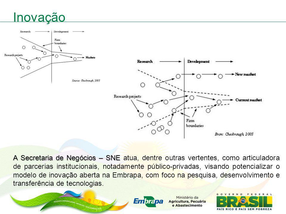 Inovação A Secretaria de Negócios – SNE A Secretaria de Negócios – SNE atua, dentre outras vertentes, como articuladora de parcerias institucionais, n