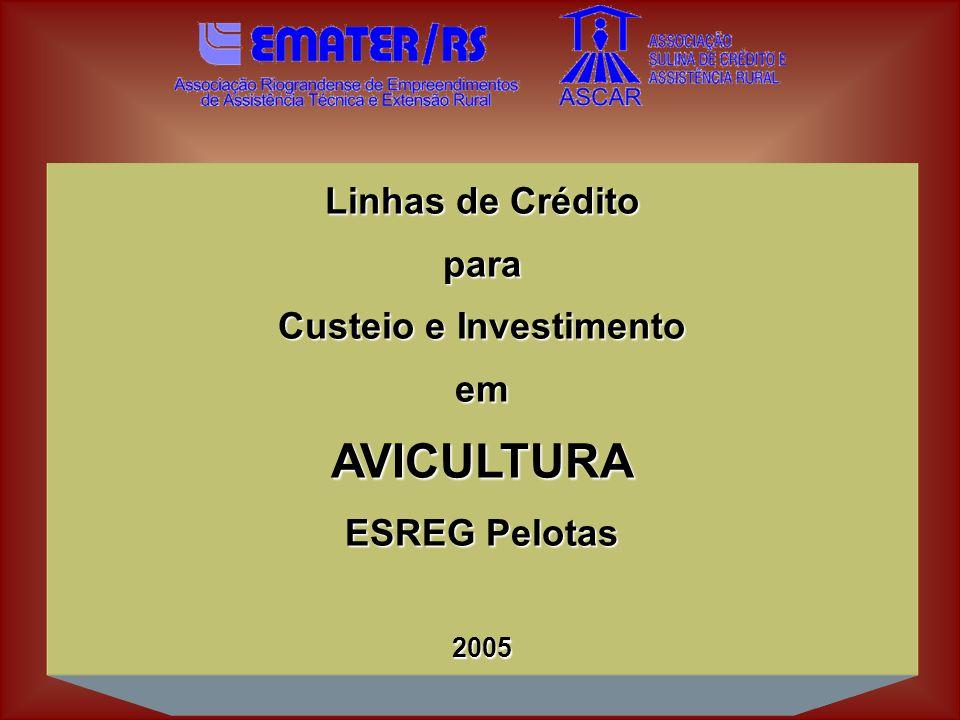 Linhas de Crédito para Custeio e Investimento emAVICULTURA ESREG Pelotas 2005