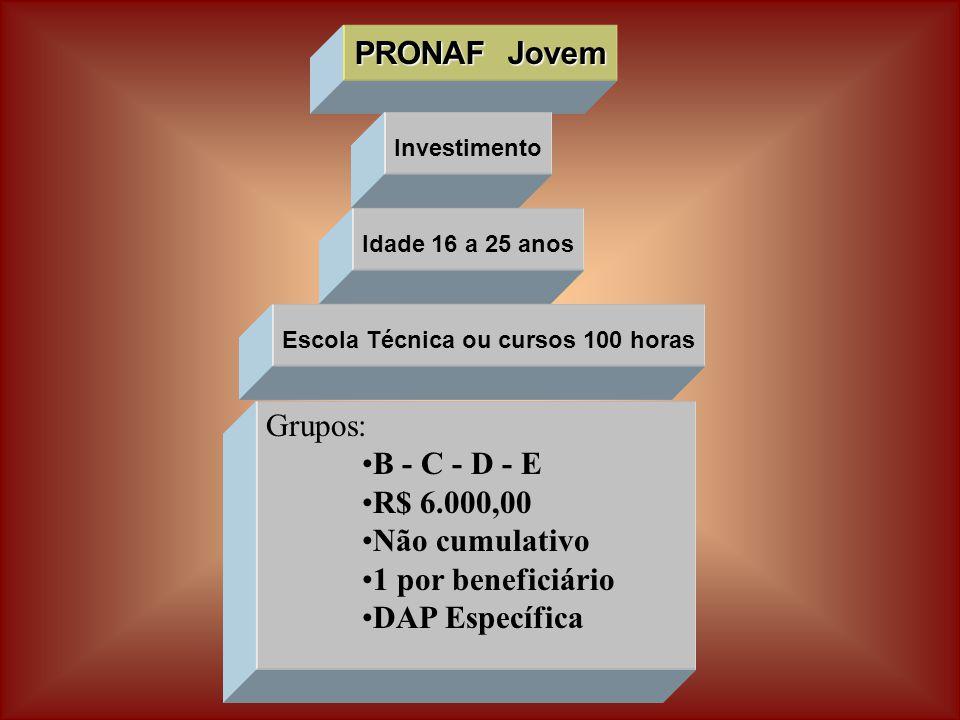 PRONAF Jovem Investimento Grupos: B - C - D - E R$ 6.000,00 Não cumulativo 1 por beneficiário DAP Específica Idade 16 a 25 anos Escola Técnica ou cursos 100 horas