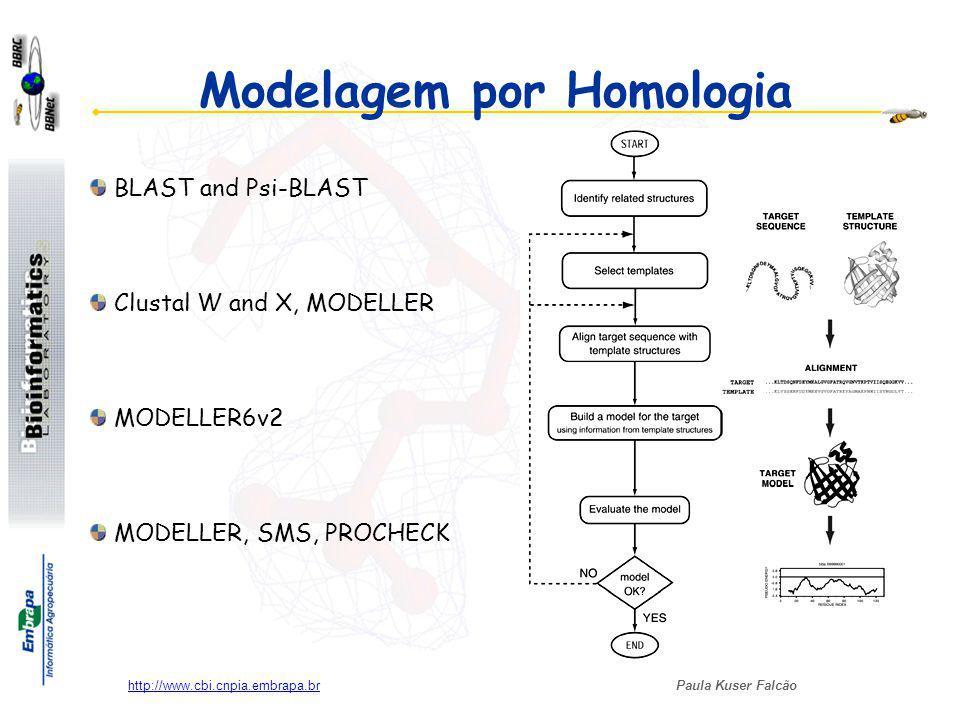 Paula Kuser Falcão http://www.cbi.cnpia.embrapa.br Modelagem por Homologia BLAST and Psi-BLAST Clustal W and X, MODELLER MODELLER6v2 MODELLER, SMS, PROCHECK