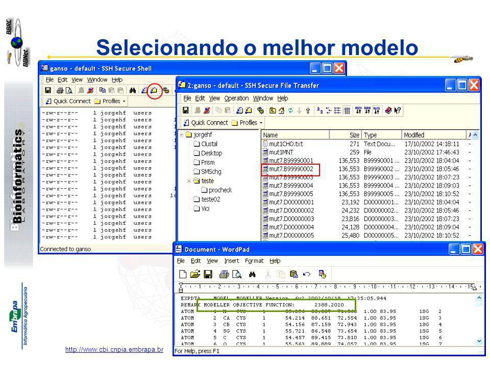 Paula Kuser Falcão http://www.cbi.cnpia.embrapa.br Selecionando o melhor modelo