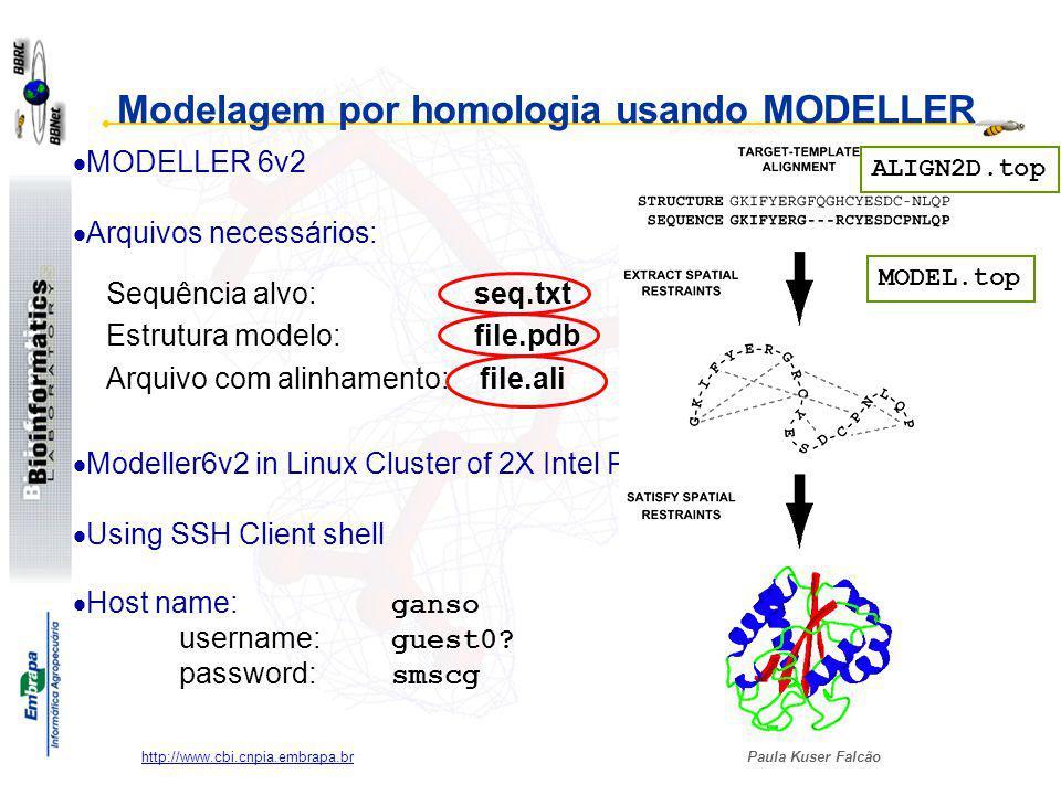 Paula Kuser Falcão http://www.cbi.cnpia.embrapa.br Sequência alvo: seq.txt Estrutura modelo: file.pdb Arquivo com alinhamento: file.ali Modelagem por homologia usando MODELLER Modeller6v2 in Linux Cluster of 2X Intel PIII Using SSH Client shell Host name: ganso username: guest0.