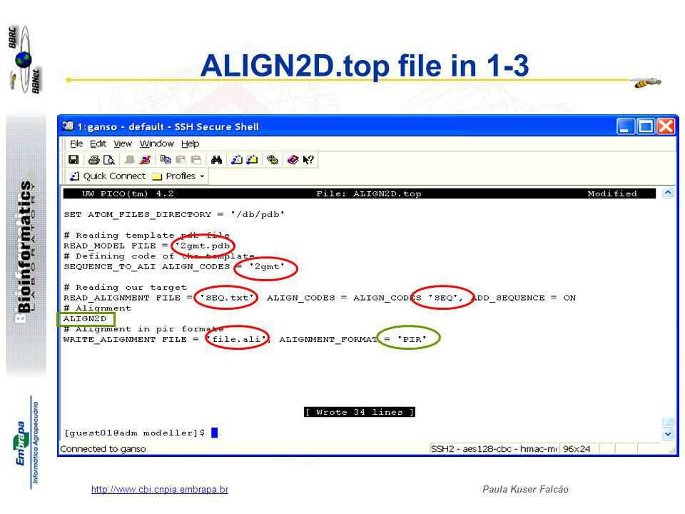 Paula Kuser Falcão http://www.cbi.cnpia.embrapa.br Alinhando a sequência alvo com nossa sequência Running ALIGN2D.top $rsh node .
