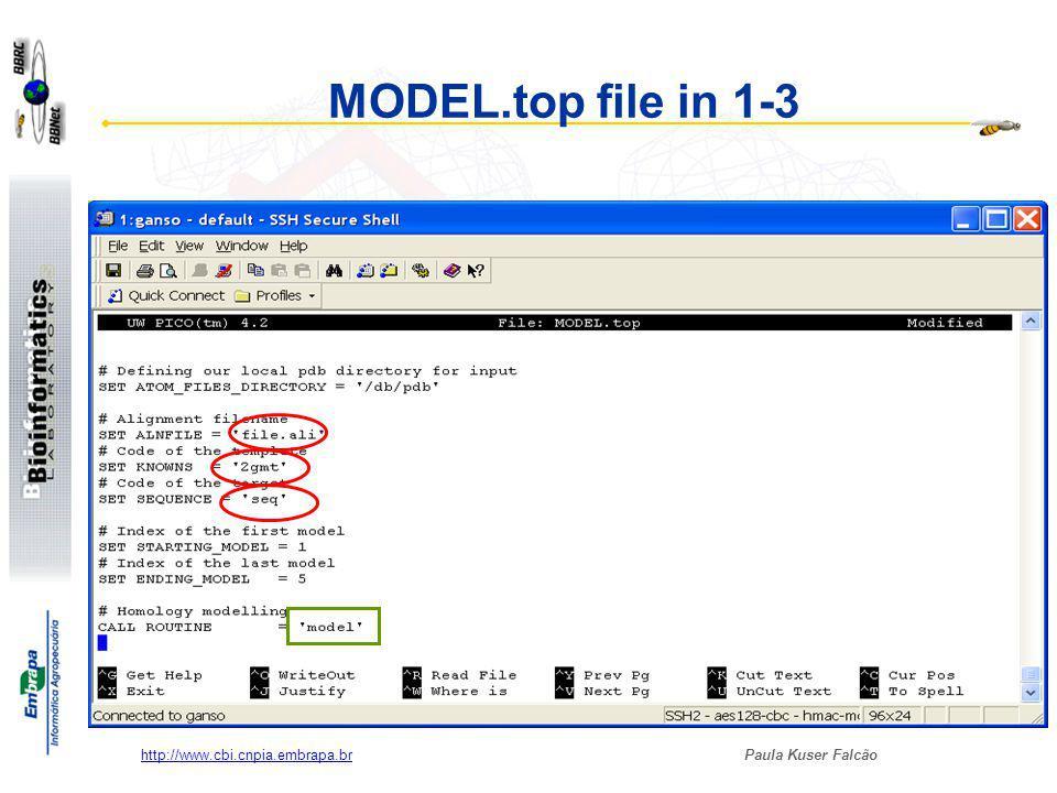 Paula Kuser Falcão http://www.cbi.cnpia.embrapa.br Running MODEL.top $rsh node.