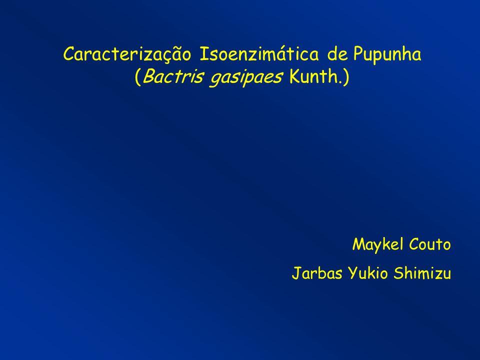 Caracterização Isoenzimática de Pupunha (Bactris gasipaes Kunth.) Maykel Couto Jarbas Yukio Shimizu