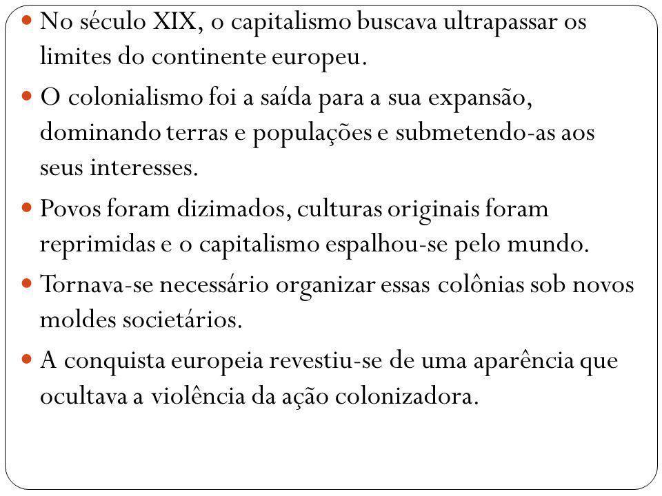 No século XIX, o capitalismo buscava ultrapassar os limites do continente europeu. O colonialismo foi a saída para a sua expansão, dominando terras e