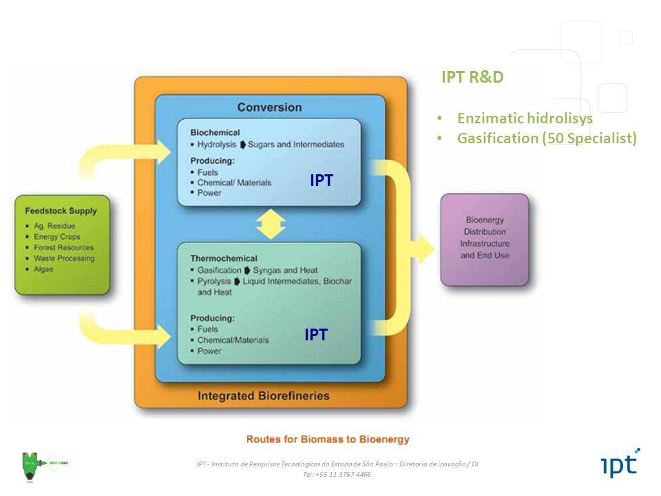 IPT - Instituto de Pesquisas Tecnológicas do Estado de São Paulo – Diretoria de inovação / DI Tel: +55 11 3767-4466 IPT R&D Enzimatic hidrolisys Gasification (50 Specialist) IPT