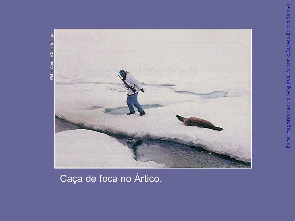 Parte integrante da obra Geografia Homem & Espaço, Editora Saraiva Caça de foca no Ártico. Peter Arnold/Other Images