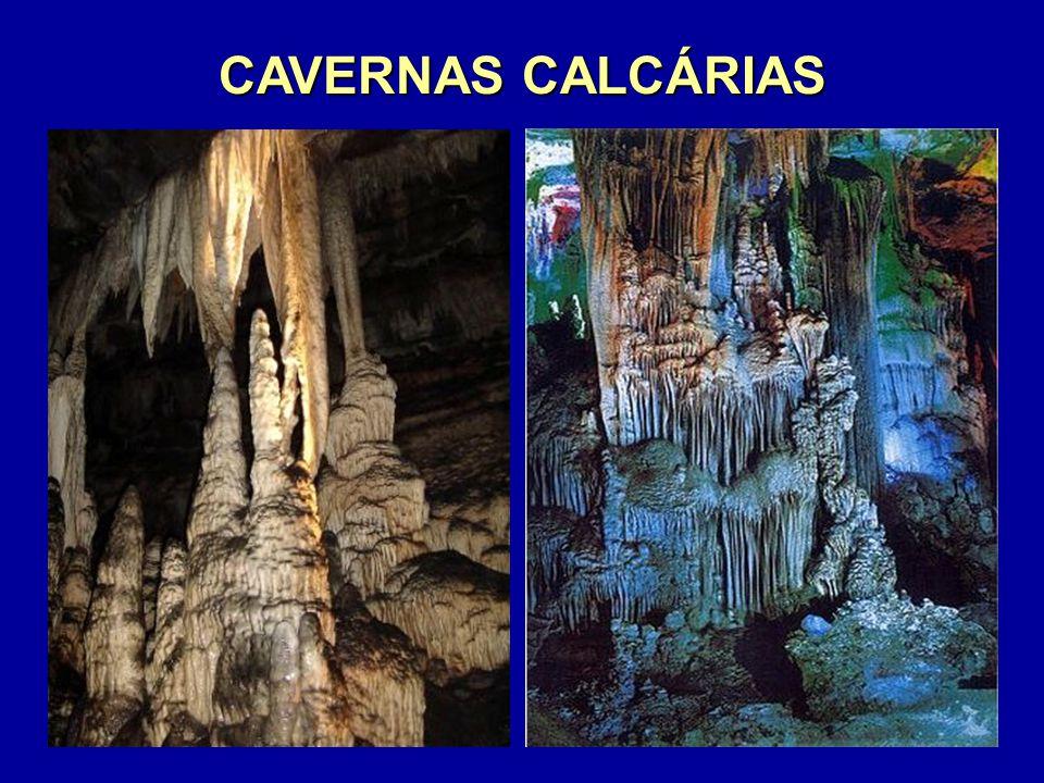 CAVERNAS CALCÁRIAS Formam-se no subsolo, em rochas calcárias, como a CALCITA, de origem sedimentar marinha; não é raro encontrar nelas restos ósseos de animais marinhos.