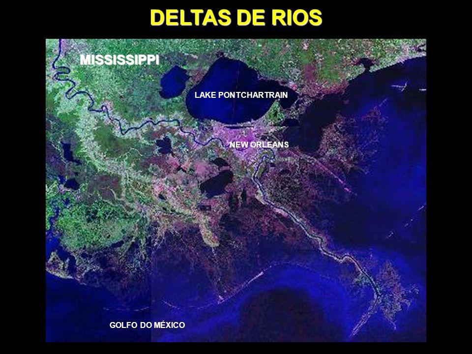 DELTAS DE RIOS O DELTA se forma na foz de rios, em planícies existentes ou formadas pelos próprios rios, com o acúmulo de sedimentos provenientes da sua bacia.