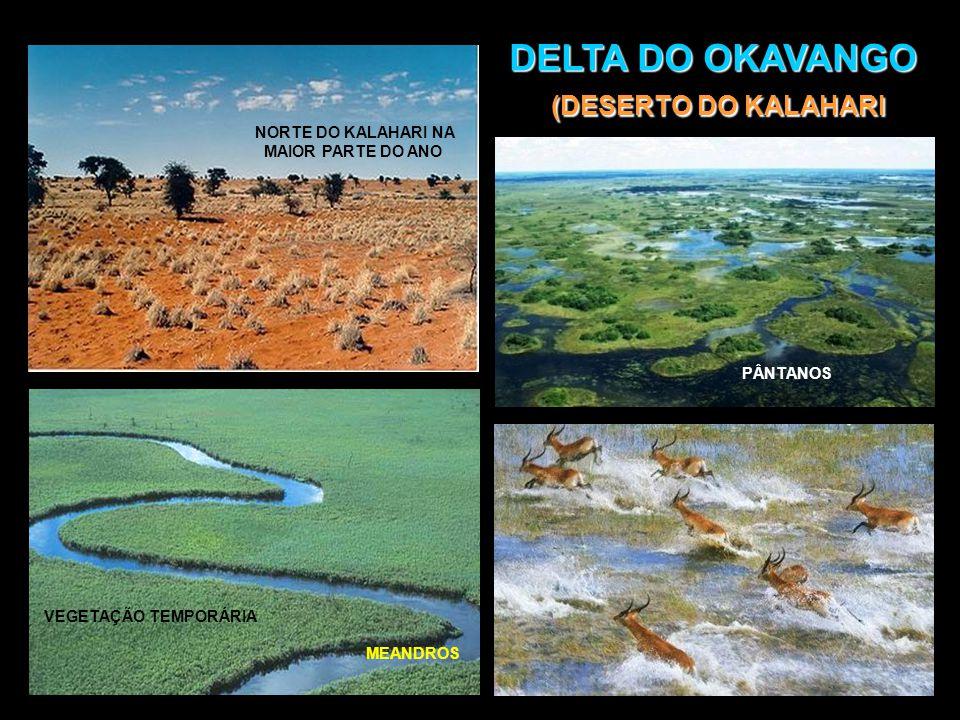 DELTA DO OKAVANGO (DESERTO DO KALAHARI) Nem todos os rios correm para o mar.