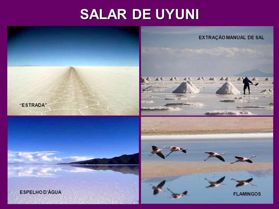 SALAR DE UYUNI É uma grande planície de sal, no sudoeste da Bolívia, com cerca de 11.000 km² de área, a 3.650 m de altitude.