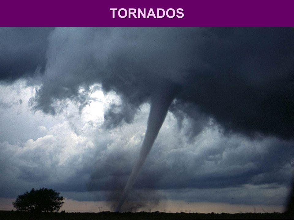 TORNADOS São colunas giratórias de ar e vapor dágua que se formam sobre terras ou águas, em geral em áreas tropicais, sob nuvens densas, com forma de cone invertido; no Hemisfério Sul, giram em sentido horário; no Norte, no sentido anti-horário.
