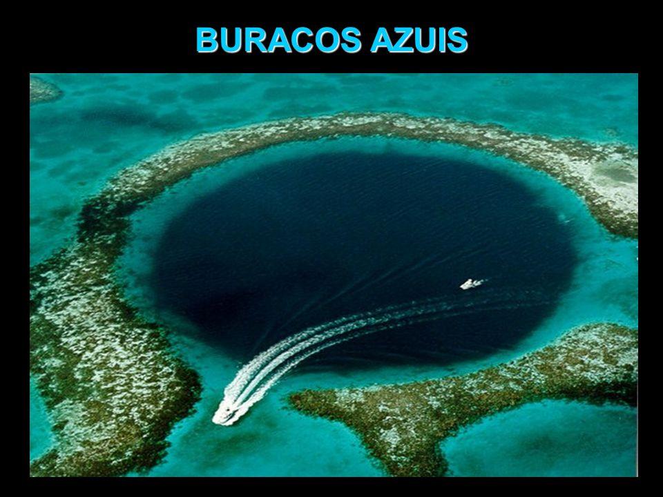 BURACOS AZUIS Embora encontrados nos mares, são remanescentes de extensos sistemas de cavernas formadas pela ação da água doce em regiões calcárias, em terra firme, durante períodos de antigas glaciações, há 15 mil anos, quando o nível do mar chegou a 100- 120m abaixo do atual.