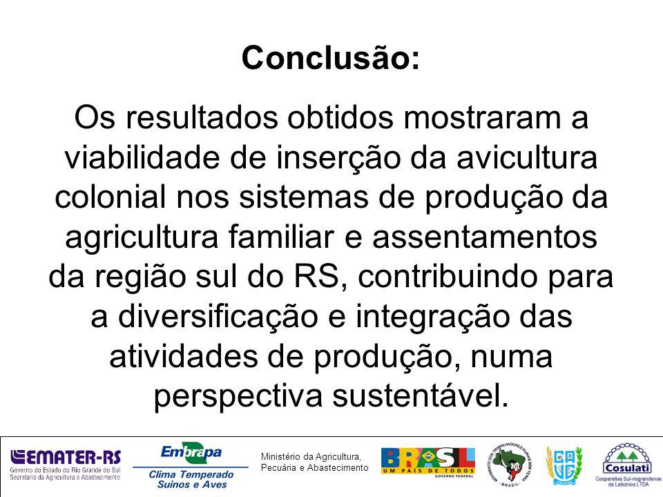 Conclusão: Os resultados obtidos mostraram a viabilidade de inserção da avicultura colonial nos sistemas de produção da agricultura familiar e assentamentos da região sul do RS, contribuindo para a diversificação e integração das atividades de produção, numa perspectiva sustentável.