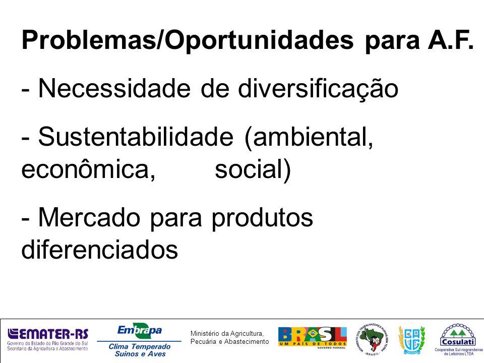Ministério da Agricultura, Pecuária e Abastecimento Problemas/Oportunidades para A.F.