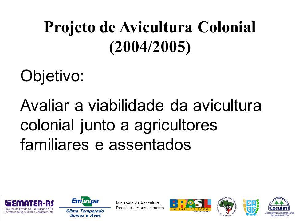 Ministério da Agricultura, Pecuária e Abastecimento Projeto de Avicultura Colonial (2004/2005) Objetivo: Avaliar a viabilidade da avicultura colonial junto a agricultores familiares e assentados